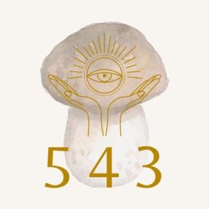 仙菇543