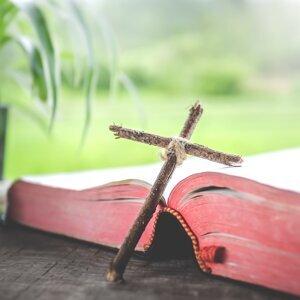 詩篇第79篇 求主赦免