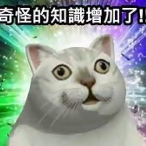 2.長姿勢特擊:體驗同志三溫暖之阿北粗四啦!蘿蔔王 feat. 麻油雙妖(上)