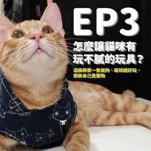 EP3 怎麼讓貓咪有玩不膩的玩具? 逗貓棒買一隻就夠、紙球超好玩、假裝自己是獵物