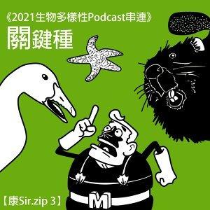 《2021生物多樣性Podcast串連》【康Sir.zip 3】關鍵種