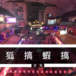 EP.020 - 普吉 7/1 即將開放,淫狐會第一時間衝去嗎