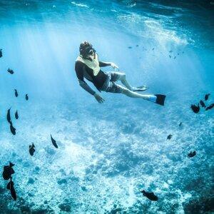 【英語奇育記 國際文教新聞Follow me】拯救珊瑚礁的哥倫比亞潛水學校