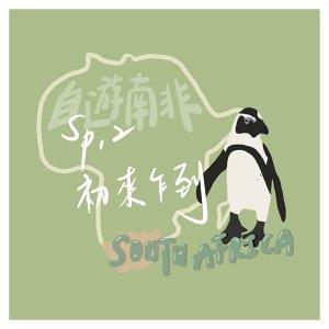 【自遊南非】Sp.2 企鵝漫步海岸,風起雲湧好望角,無敵海景villa