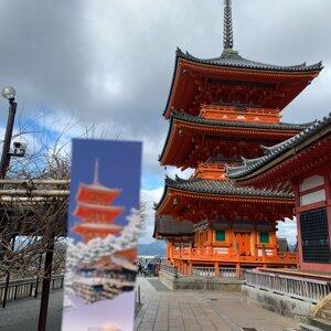 瘋狂旅行團ep1「帶沙子去日本旅遊的阿嬤?」聯合國俱樂部航空,日本出遊奇遇記 !
