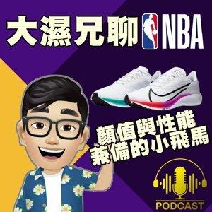 EP.49【跑鞋推薦】顏值與性能兼備的 Nike Air Zoom Pegasus 37 / 38