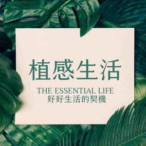 EP19:調製自己的精油香水,從品香到調配比例的詳細介紹