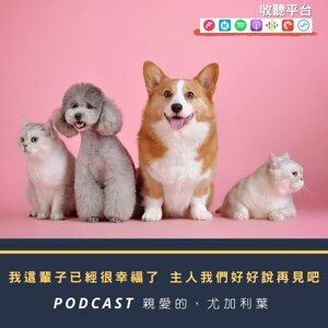 #57|家裡的寵物搞不定?不用問神!有一種問卜叫做寵物溝通ft.大肚魚的動物療天室