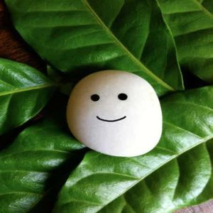 #6|花媽心情藍瘦,10句簡單的鼓勵句子-《Ishi: Simple Tips from a Solid Friend》