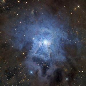 223. NGC 7023:尾蝶花星雲 ft. 阿錕 (20210903)