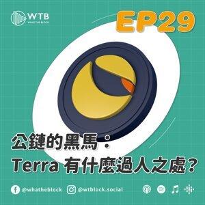 EP29 公鏈的黑馬:Terra 有什麼過人之處?