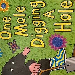 One mole digging a hole/ Julia Donaldson/ Axel Scheffler/ Macaillian