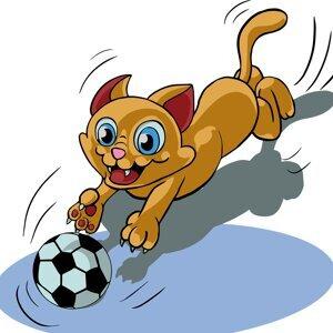 第18集寵物玩-貓玩樂之ㄧ